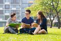 Group students sharing ideas campus lawn Royalty Free Stock Image