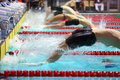 Group swimmers dive back into the water in pool Stock Photography