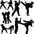 Karate girl silhouette Royalty Free Stock Photo