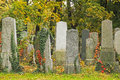 Group of tombstones at vienna main cemetery Royalty Free Stock Photos