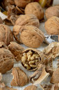 Group of walnuts chopped with shell on textile background Royalty Free Stock Photos