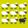 Group of white sheep and a black sheep vector Royalty Free Stock Photo