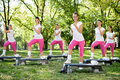Group of women doing exercises in park healthy lifestyle Stock Photos