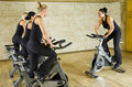 Group of women exercising on bikes Royalty Free Stock Photography