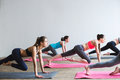 Group women on floor of sports gym doing push ups. Royalty Free Stock Photo