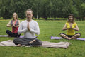 stock image of  Group yoga class on the green grass in the park