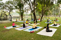 Group Yoga Practice in Park Royalty Free Stock Images