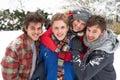 Grupo de joven adultos en nieve