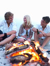Group of young people at the beach drinking beer a Royalty Free Stock Image