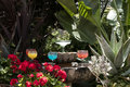 Grouping of margarita glasses and drink various colored drinks on a decorated fountain Stock Photo