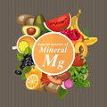 Groups of healthy fruit vegetables meat fish and dairy products containing specific vitamins magnesium minerals vector Stock Photography