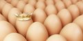 Grow egg row a background Stock Image