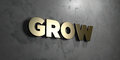 Grow - Gold sign mounted on glossy marble wall - 3D rendered royalty free stock illustration