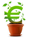 Growing euro symbol like plant with leaves in flow stylized shape of sign ground qualitative vector eps concept for banking Royalty Free Stock Photo