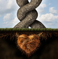Growing in love relationship and romance concept as two trees tangled together a passionate loving embrace with underground Stock Image