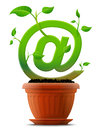 Growing mail symbol like plant with leaves in flow stylized shape of at sign ground qualitative vector eps illustration about Stock Image