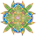 Growing marijuana leaf kaleidoscope symbol design Royalty Free Stock Photography