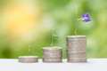 Growing money concept with sun flair. Royalty Free Stock Photo