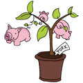 Growing pigs an image of a pig plant Stock Photos