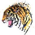 Growl Tiger T-shirt Graphics, ...
