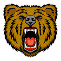 Growling bear a head logo this is vector illustration ideal for a mascot and tattoo or t shirt graphic Royalty Free Stock Photos