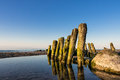 Groyne on shore of the baltic sea Royalty Free Stock Images