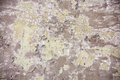 Grung wall texture scratches and cracks Stock Images