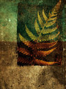 Grunge abstract background with fern leaf Royalty Free Stock Photo