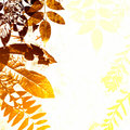Grunge Autumn Leaves Silhouette Royalty Free Stock Images