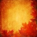 Grunge autumnal background Royalty Free Stock Photo