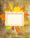 Grunge background with autumn leaves and wooden frame Stock Image