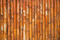 Grunge bamboo fence background Royalty Free Stock Photo
