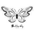 Grunge butterfly painted with ink isolated on white Royalty Free Stock Photos