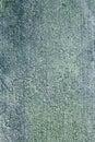 Grunge cement wall textured background