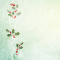 Grunge christmas background holly branch Stock Images