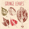 Grunge fallen leaves texture eps vector illustration Stock Photo
