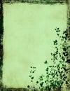 Grunge foliage frame Royalty Free Stock Photo