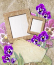 Grunge frame with pansy and paper Stock Photography