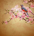 Grunge illustration with bird on blossoming tree Stock Photography
