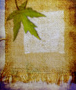 Grunge painted jute and maple leaf Stock Photos