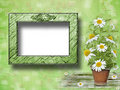 Grunge paper with beautiful bunch of daisy Stock Images
