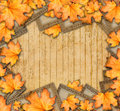 Grunge paper design in scrapbooking style with photoframe and autumn foliage Stock Photos