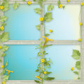 Grunge paper frames with flowers pumpkins Stock Image