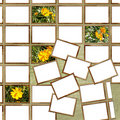 Grunge poster with postage stamps and flowers Stock Images