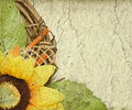 Grunge retro background with sunflower copy space Royalty Free Stock Photo
