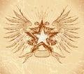 Grunge star & wings Royalty Free Stock Photo