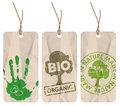 Grunge tags for organic / bio / eco Royalty Free Stock Photos