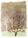 Grunge trees illustration - autumn Royalty Free Stock Image