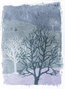 Grunge trees illustration - winter Stock Photo