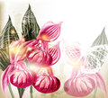 Grunge vector background with  realistic pink orchids Royalty Free Stock Photo